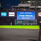 Ballgame by Peter Maeck