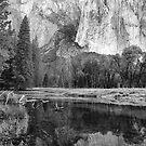 El Capitan Reflection in the Merced River, Yosemite, California by Pete Paul