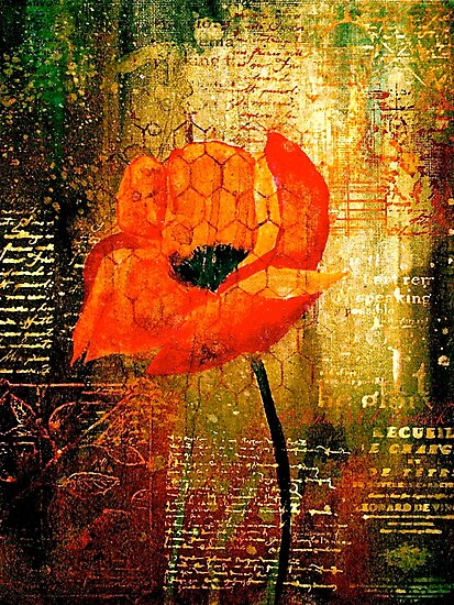 The Poppy Journals...Trapped by ©Janis Zroback