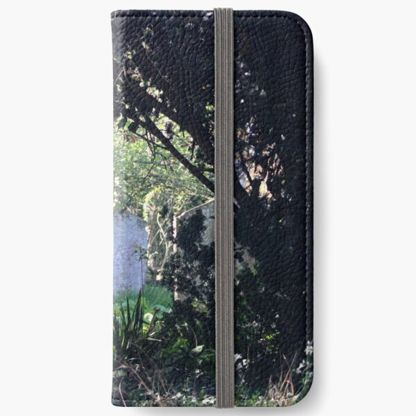 Spring graves iPhone Wallet