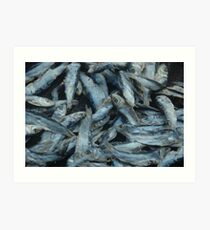 salt fish Art Print
