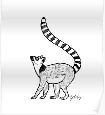 Ringtailed Lemur on Green Poster
