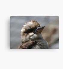 Bird Profile Canvas Print