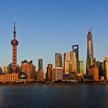 shanghai skyline during daylight by shaun965