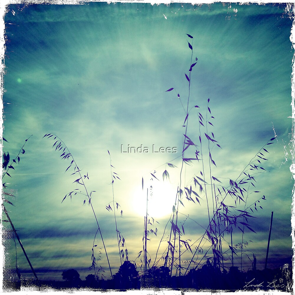 As the sun sets on another day by Linda Lees
