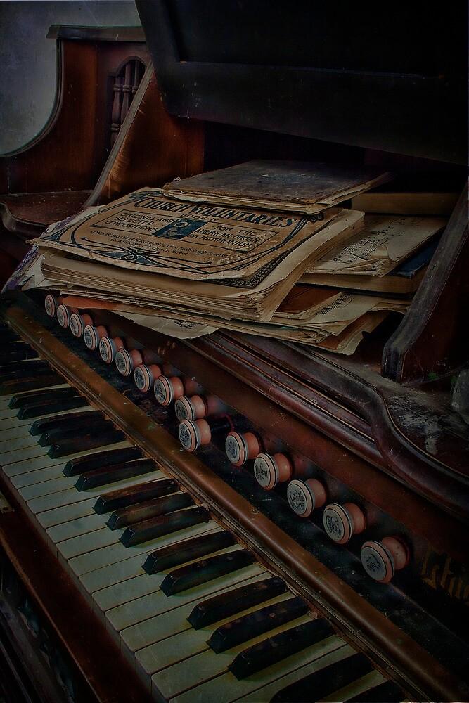 Old Organ by Dave Godden
