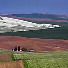 Patterns In The Palouse. by Todd Rollins