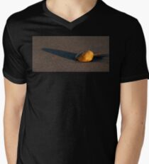 Sunset Stone Mens V-Neck T-Shirt