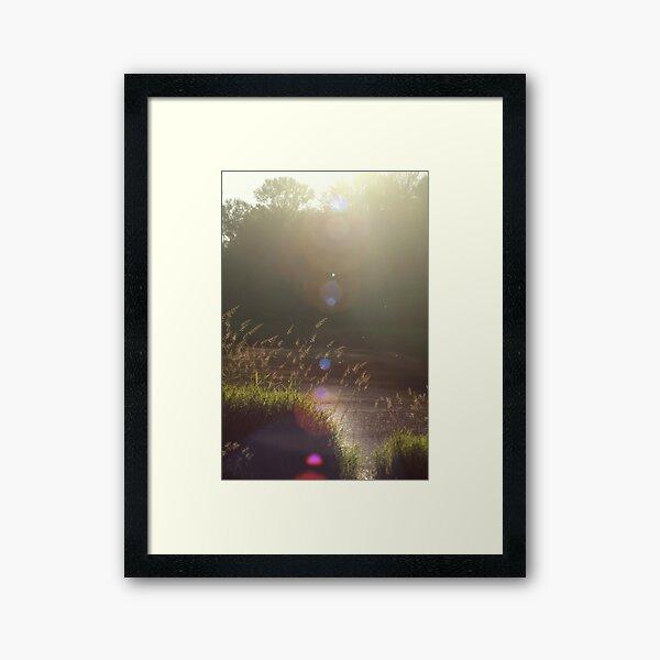 view across Trojan pond, near Goble, Oregon with lens flair Framed Art Print