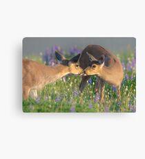 Deer Dear Kisses Canvas Print