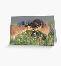 Deer Dear Kisses Greeting Card