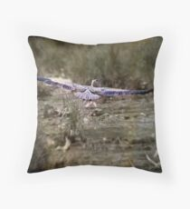 40 Yard Touch-Down Throw Pillow