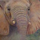 Matriach -  Elephant Totem  by Cheryl White