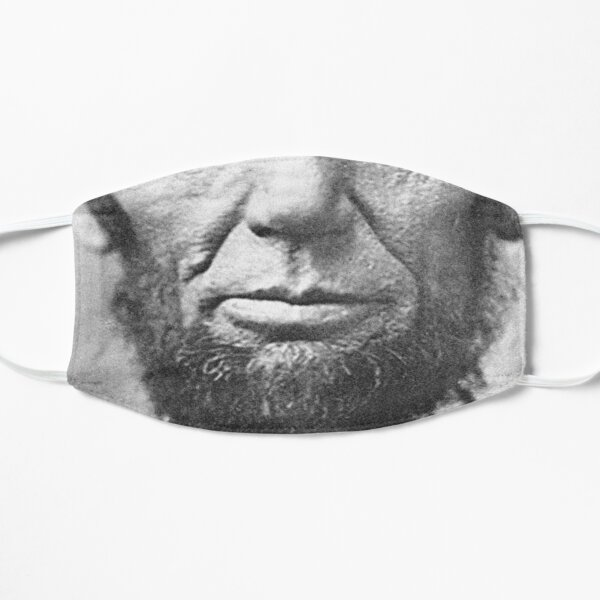 Lincoln Face Mask