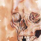 skull by deedeedee123