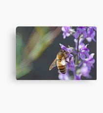Bee Happy II Canvas Print