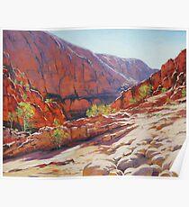 Ormiston Gorge , Central Australia Poster