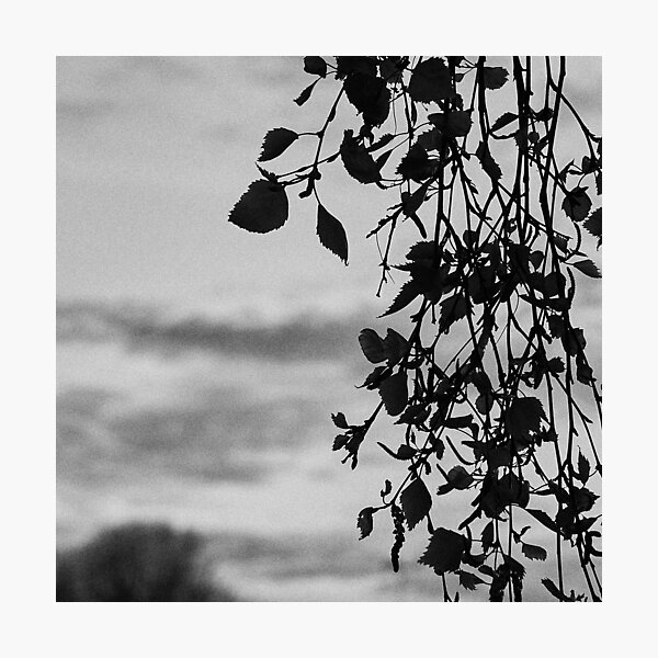 CSTETM Photography 1 Photographic Print