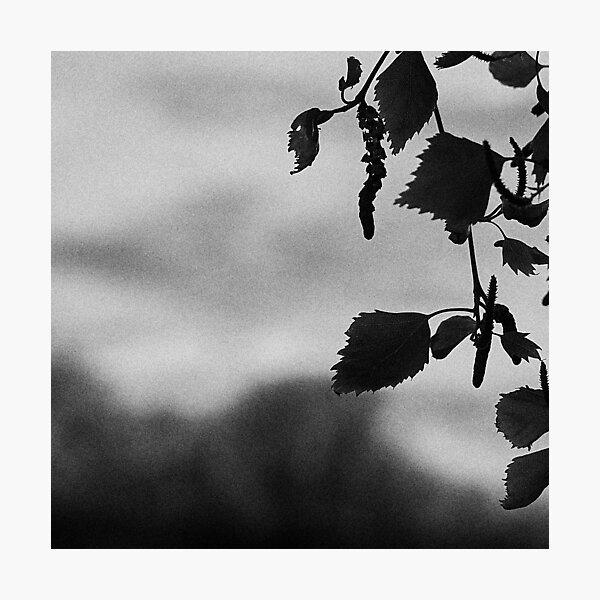 CSTETM Photography 4 Photographic Print