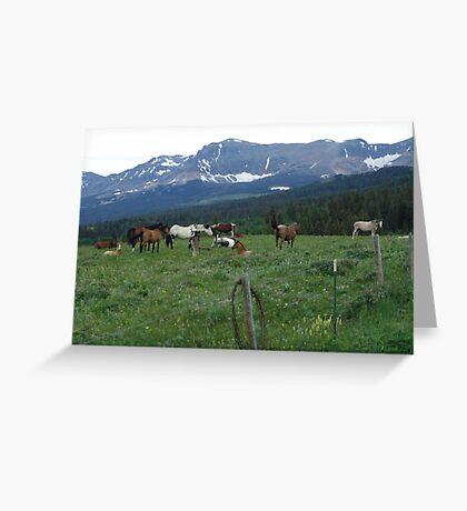 BLACKFOOT HORSE BAND - NEAR BROWNING, MT Greeting Card