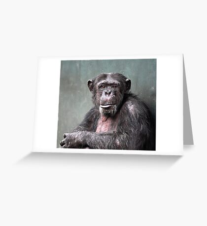 Life In A Concrete Jungle Greeting Card
