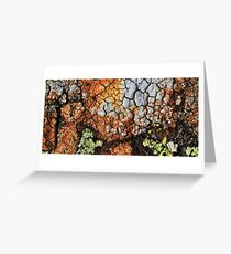 coloured by nature  Greeting Card
