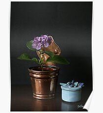 Hortensia mauve. Poster