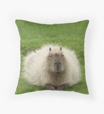 Bad Hare Day? Throw Pillow