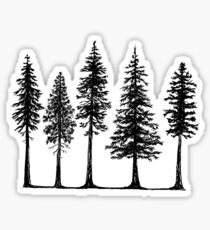 Pines Sticker