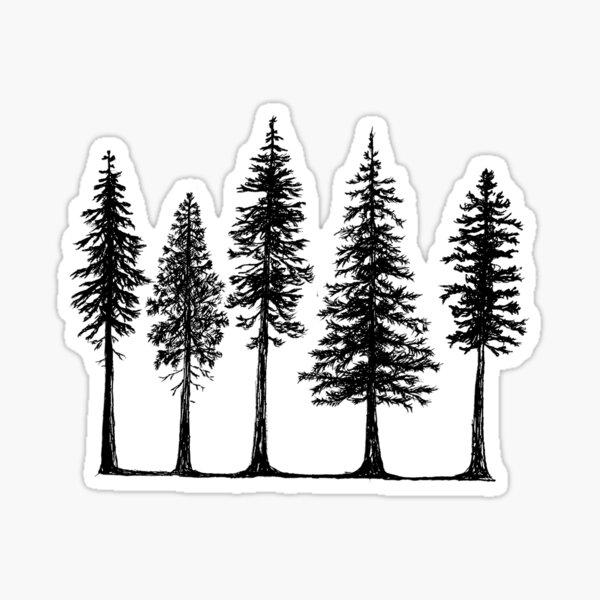 Pines Sticker