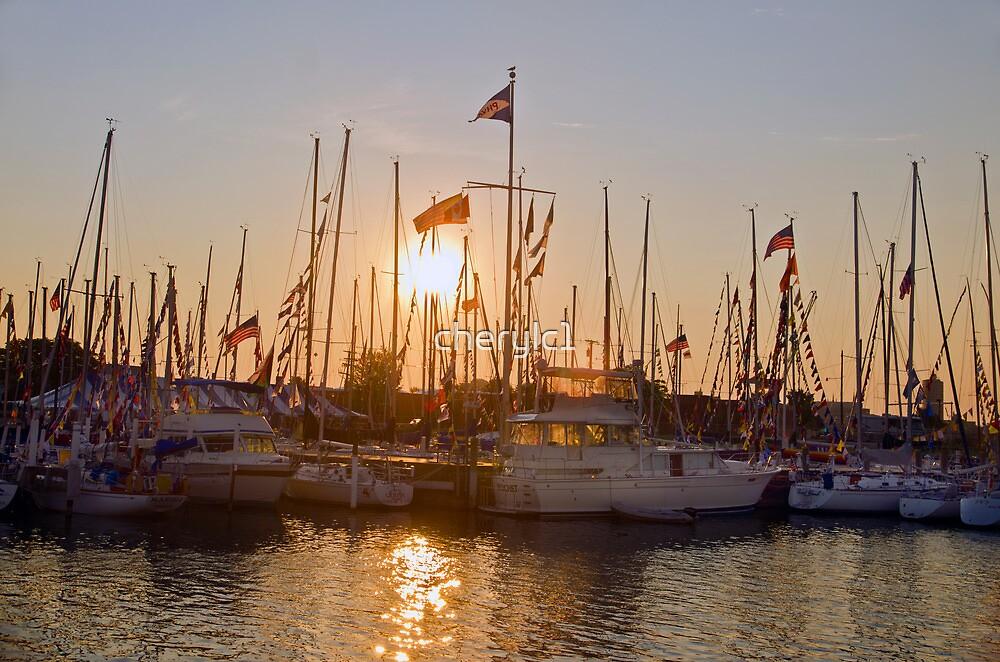 Sun rise on the marina by cherylc1