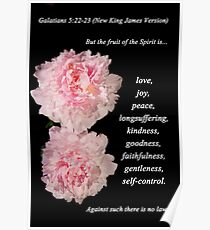 Galatians 5:22-23 Poster