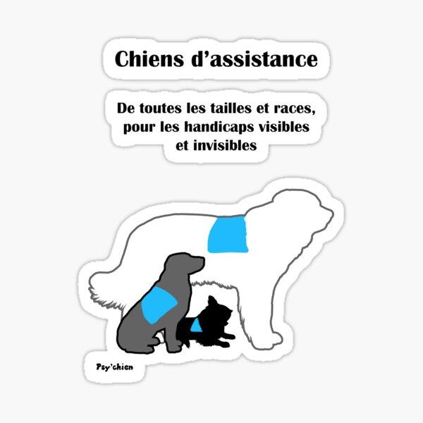 Trois Chiens Psy'chien Sticker