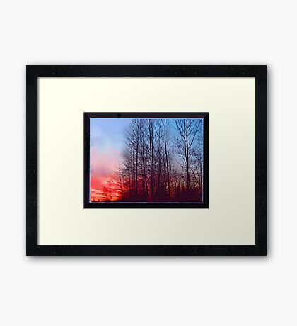 Winter Sunrise Through the Trees Framed Print