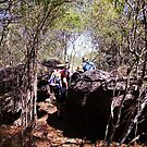 Beating through the bush - Arnhem Land 2012 by georgieboy98