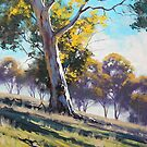 Australian Gum by Graham Gercken