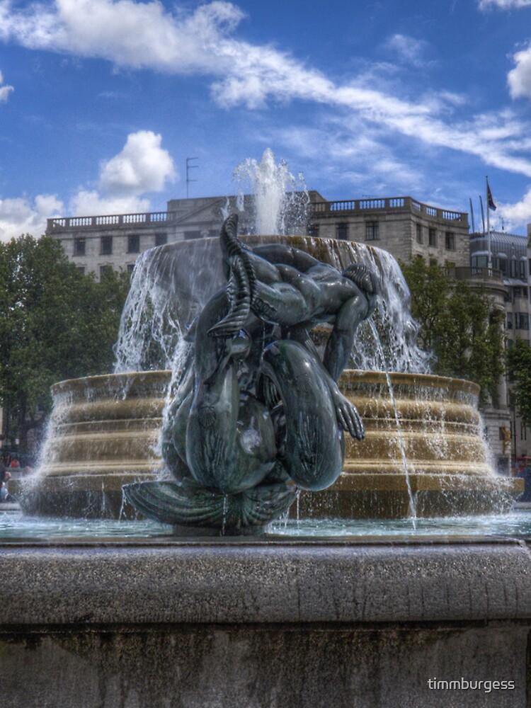 Trafalgar Square  fountain by timmburgess