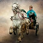 Gypsy Trot by Tarrby
