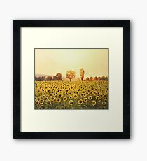 Memories of The Summer Framed Print