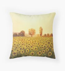 Memories of The Summer Throw Pillow