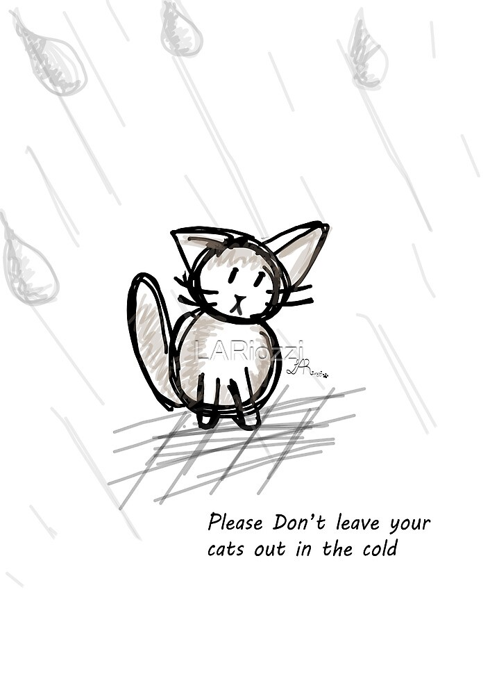 Pets get cold too. by LARiozzi