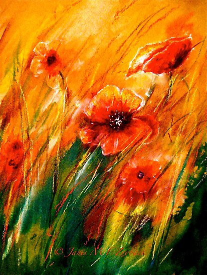 Flowers...Poppy Fields by ©Janis Zroback