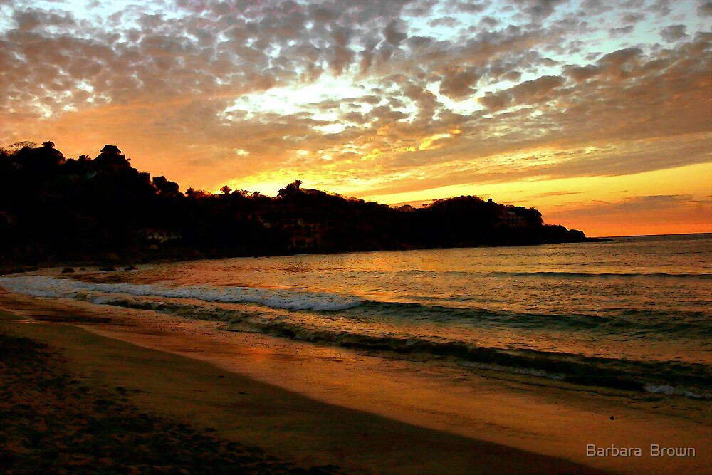 Evening in Mexico by Barbara  Brown