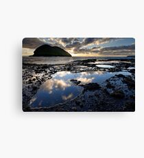 Sunsetting Doughboys Canvas Print
