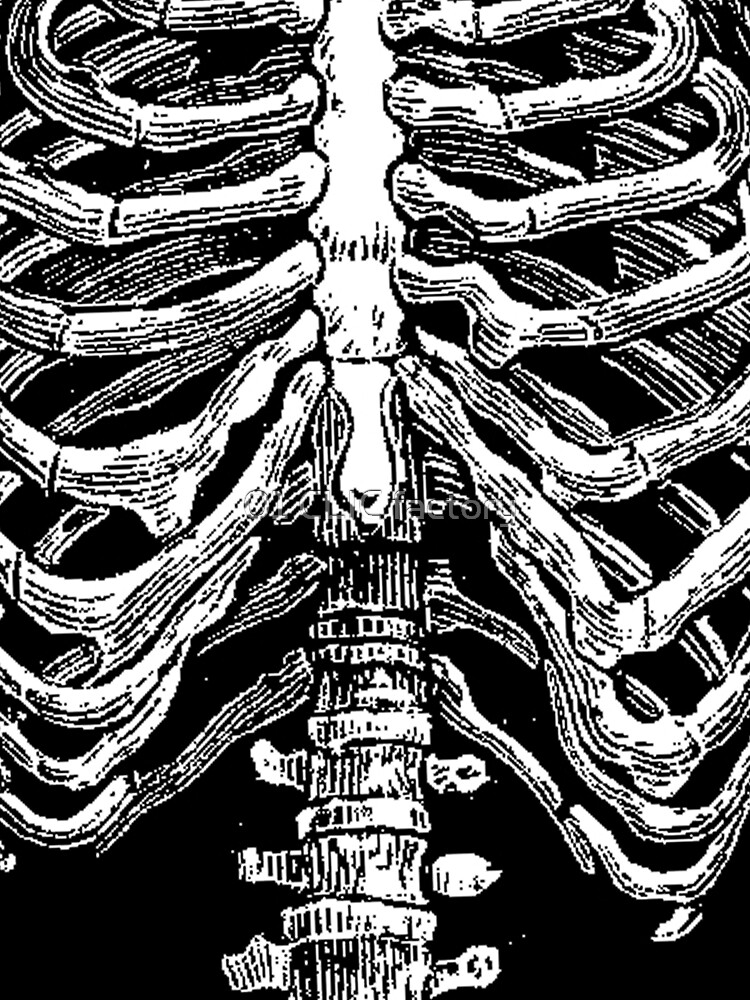 BODY by morganPASLIER