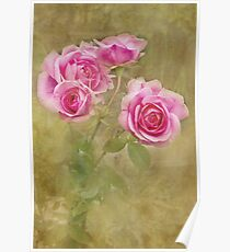 Victoriana Roses Poster