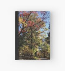 A colorful ride Hardcover Journal