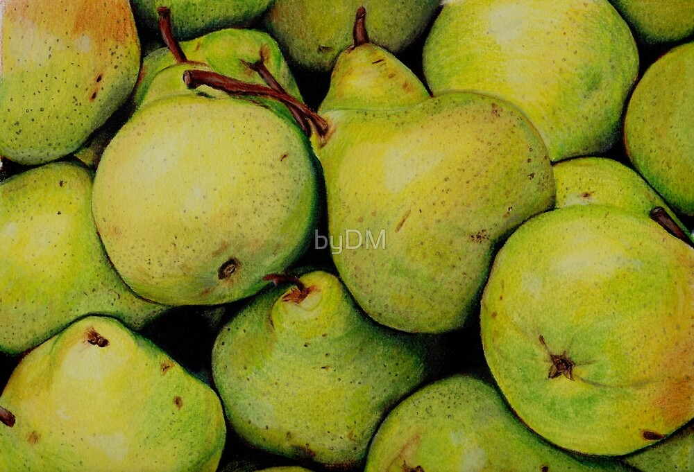 Pears in Colour Pencil by DMxx