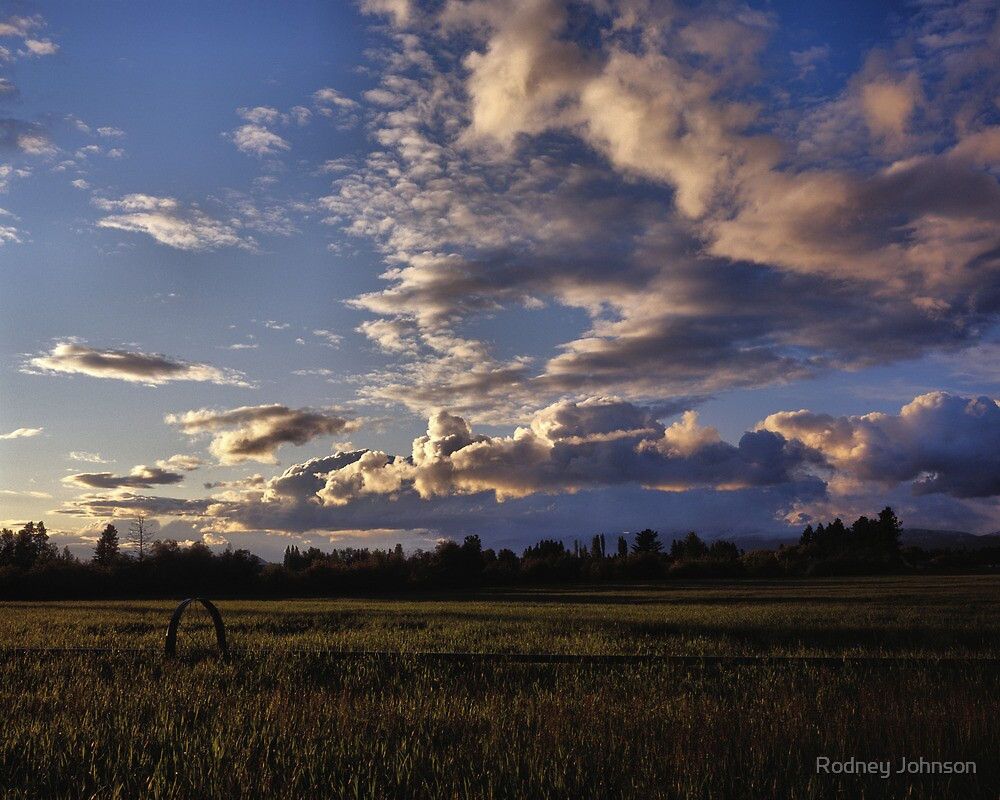 Spring Sunset, Evergreen Montana by Rodney Johnson