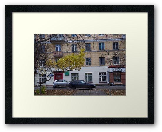 Last yellow leaves before winter by MrTaskaev